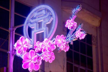 Hoa Led trang trí mỹ thuật