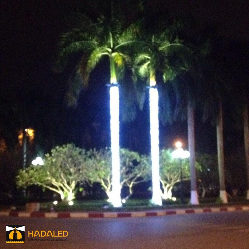 Đèn Led quấn cây